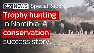 Trophy hunting in Namibia: A conservation success story?