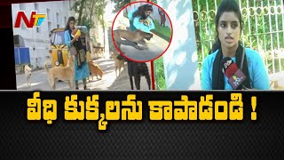 Techie feeding stray dogs for last 10 years in Tirupati; c..