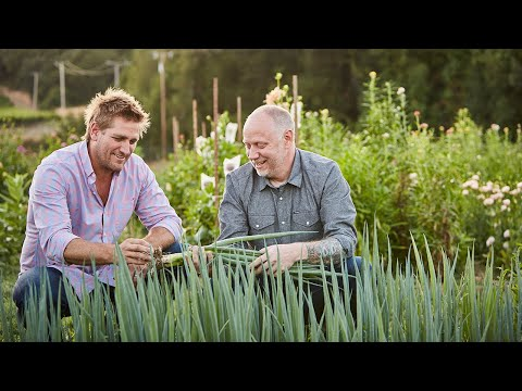 screenshot of youtube video titled Field Trip with Curtis Stone Season 2 | Promo