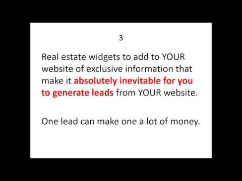 Harnessing the Powers of the Internet for Real Estate Brokers and Salespeople