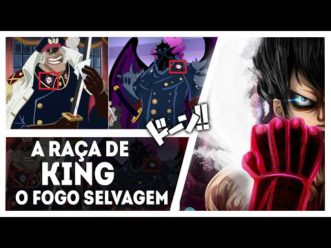 A RAÇA DE KING e O PODER DE LUFFY QUE VAI COLOCAR ELE NO NÍVEL YONKO  – One Piece 952