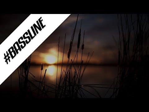 P Money - Everything (Organ Remix)   Bassline - Organ