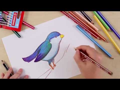 How to draw a bird (STABILO Tutorials, intermediate)