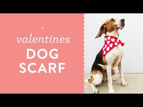 DIY No Sew Valentine's Day Heart Dog Scarf