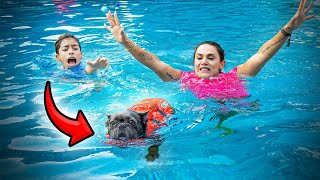 Our PUPPY Almost DROWNED... | The Royalty Family