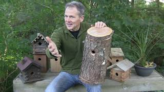 How to Build a Log Bird House