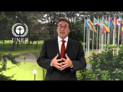 Achim Steiner's message for the UN-REDD Programme Policy Board