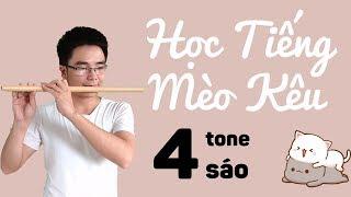 Học Tiếng Mèo Kêu - Cover Bằng 4 Tone Sáo Hiếm: B4, C5#, D5, E5 | Sáo Trúc Bùi Gia