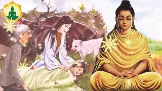 Hàng Triệu Người Rơi Nước Mắt Khi Nghe Câu Chuyên Này Kể Truyện Phật Giáo Hay Nhất