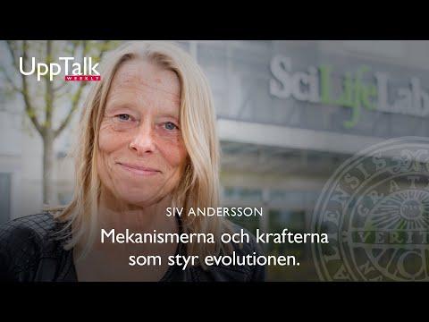 UppTalk Weekly: Vad kan vi lära oss av evolutionära processer från studier av bakteriers arvsmassor?