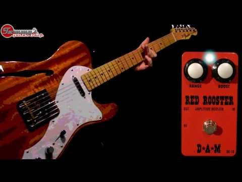D*A*M Red Rooster RR-10 Full-Production Demo for Tommy's Guitar Shop