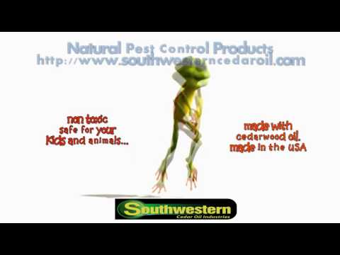 All Natural Pest Control Products