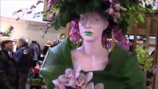 SOOS Orchid Show Toronto 2019