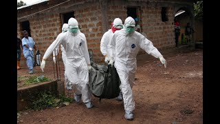 منظمة الصحة: بين 100 و300 حالة إصابة بالإيبولا في الكونغو     -