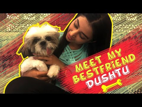 IWMBuzz: Exclusive: Meet Priyamvada Kant's 'pet' friend