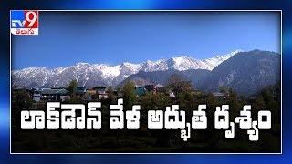 A view to remember! Himachal Pradesh's Dhauladhar range vi..