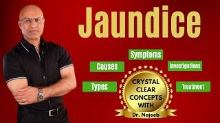 Jaundice - Types, Causes, Symptoms & Treatment - Bilirubin Metabolism - Icterus