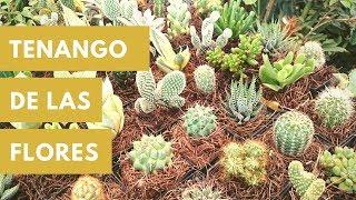 Visitando Tenango de las Flores, Puebla