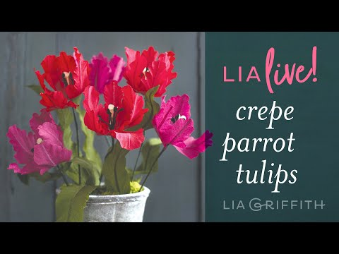 Learn How To Make Crepe Paper Parrot Tulips