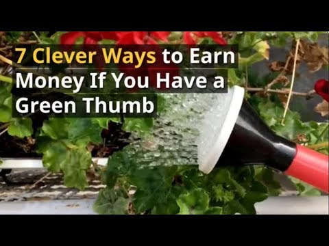 7 Clever Ways to Earn Money if You Have a Green Thumb