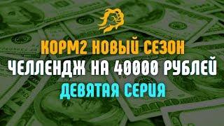 ЧЕЛЛЕНДЖ НА 40000 рублей. КОРМ2 НОВЫЙ СЕЗОН, ДЕВЯТАЯ СЕРИЯ