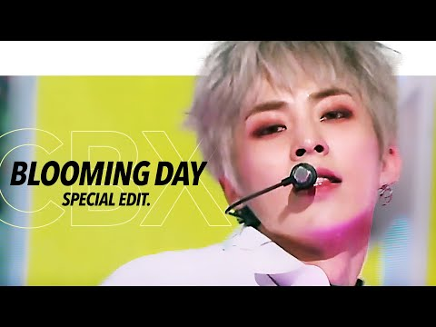 [LIVE] EXO-CBX '花요일 (Blooming Day)' TV Performance Stage Mix Special Edit.