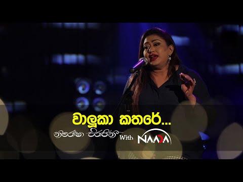 Waluka Kathare (වාලුකා කතරේ නිදිනේනා රාත්රියේ) with Naada   නාද - Nirosha Virajini