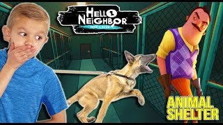 Hello Neighbor RESCUE in Neighbor's Animal Shelter with Scruff-a-Luvs Babies!!