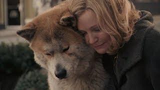 多年后重温《忠犬八公》,这些镜头又让我哭瞎了,不敢多看一遍!