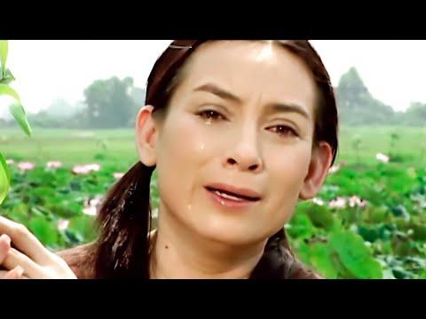 Vĩnh biệt tiếng hát Phi Nhung - Video tưởng nhớ ca sĩ Phi Nhung ai xem cũng khóc