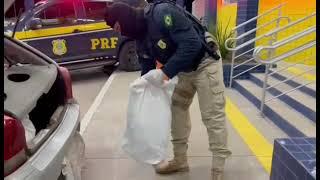 PRF prende homem contrabandeando 62 kg de agrotóxicos na BR-290, em Uruguaiana