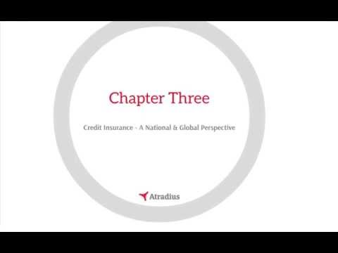 Exploring Credit Insurance - A Broker Opportunity