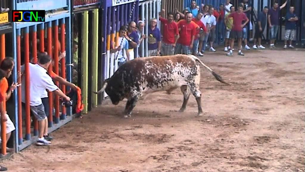 Toro de Montes de Oca - Festa La Vila 2011 - La Vilavella