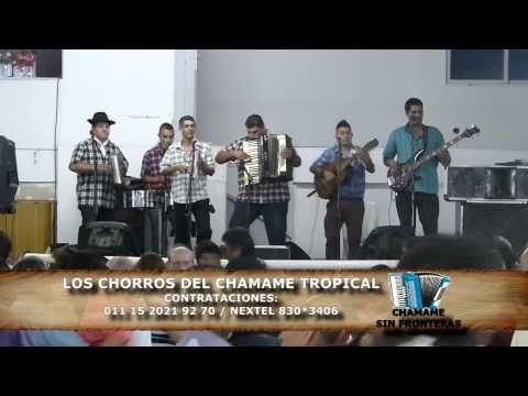 LOS CHORROS DEL CHAMAME TROPICAL 21-12-14 CLUB BELGRANO DE MERLO-CHAMAME SIN FRONTERAS