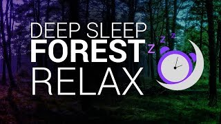 NIGHT FOREST SOUNDS 🎧 – Deep Sleep and Relaxation