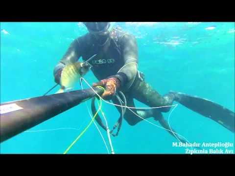 рыбалка на багамах видео