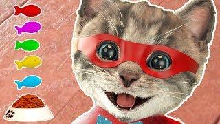 Little Kitten Adventures - Play Fun Pet Friends Costume Dress-Up Party Cartoon Kids Games