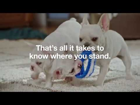 Risk Test Puppies :15 | Type 2 Diabetes Prevention | Ad Council