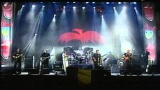 PHOENIX  Video  Concert Baba Novak Polivalenta 2006