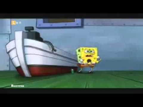 ROLLING IN THE DEEP (cover) 2012 BOB ESPONJA [HD,HQ]