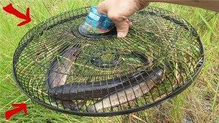 Bẫy Cá Bằng Lồng Quạt Rất Đơn Giản Mà Hiệu Quả Cao .Best Fishing Man Use Electric Fan
