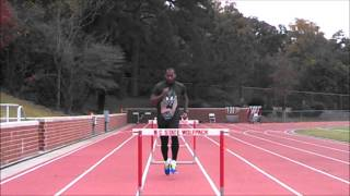 Hurdle Training - 3 Step Rhythm Work