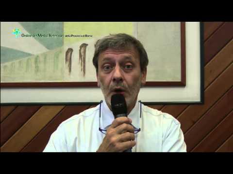 Filariosi intervista la dr. Luigi Venco
