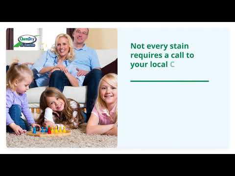 Carpet Cleaning Company in Seattle - Chem-Dry of Seattle