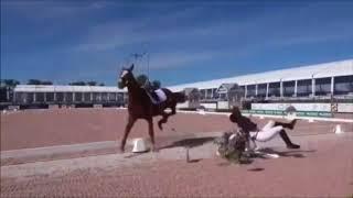 (Bad) Horse Falls & Fails | 2018 | Equi Rider