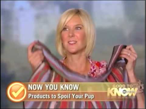 Dara Foster Pet Fashion Expert on ABC News Now