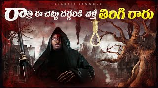 The Devils Tree In New Jersey Mystery In Telugu | Telugu Facts | Kranthi Vlogger