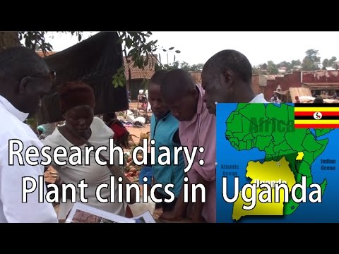 Research Diary: Plant Clinics in Uganda