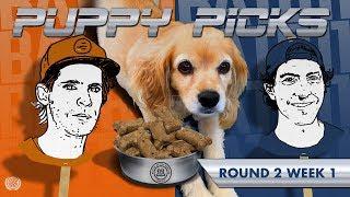 BATB 11 | Puppy Picks: Round 2 Week 1