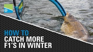 Video thumbnail for How To Catch More F1's in Winter Preston Innovations Match Fishing Videos
